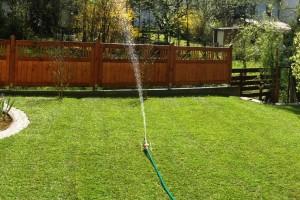 11 Titel Bewässerung